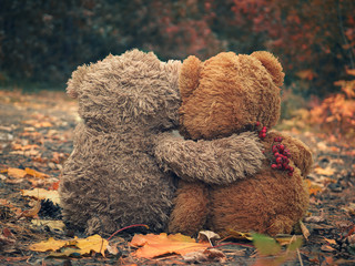 Two Teddy Bears Hugging-Image